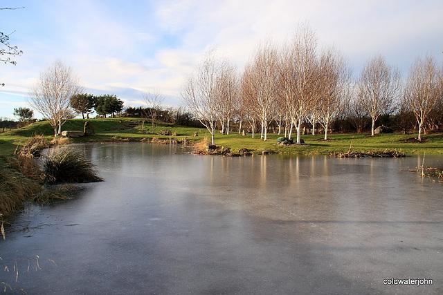 Skating rink may be open tomorrow!