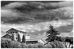 Rome Honeymoon Fuji XE-1 Palatine Hill 19 mono