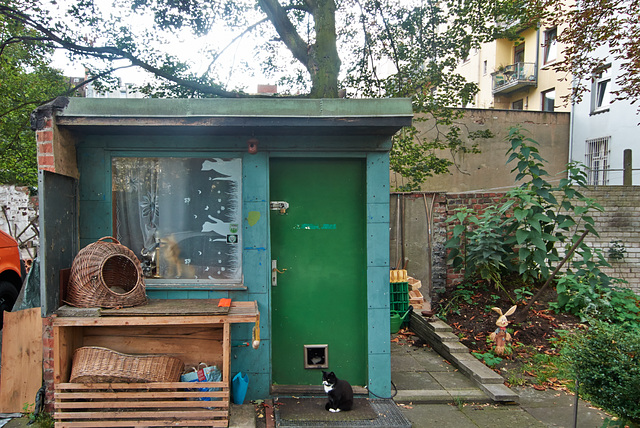 katzenhaus-1190755-co-14-09-14