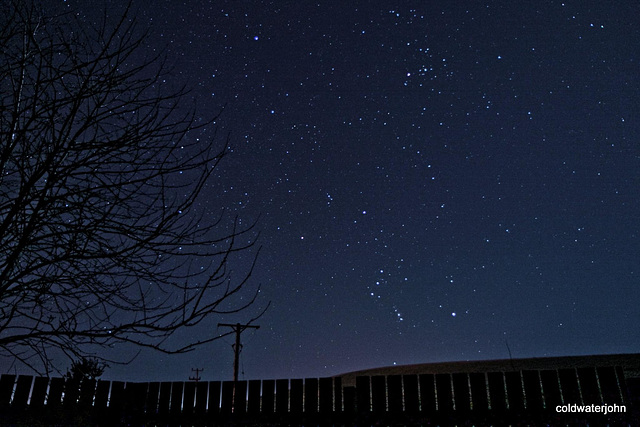 Starry night - Orion