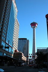 Visiting flickr contacts: Calgary