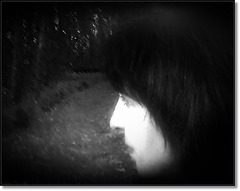 In silence 5