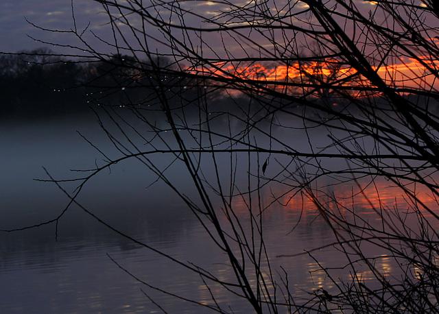 Raindrops at sunset
