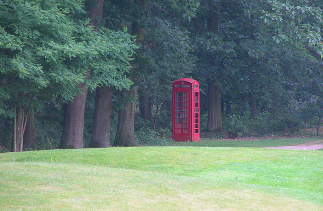 Telephone box in the woods
