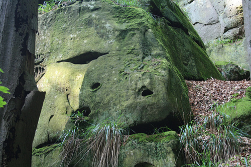 A Face In The Rock