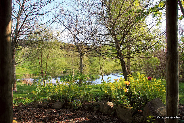Sunny Spring Afternoon in the Pond  Garden
