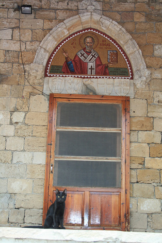 The Cat Monastery