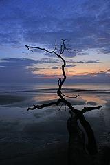 South China Sea Sunrise