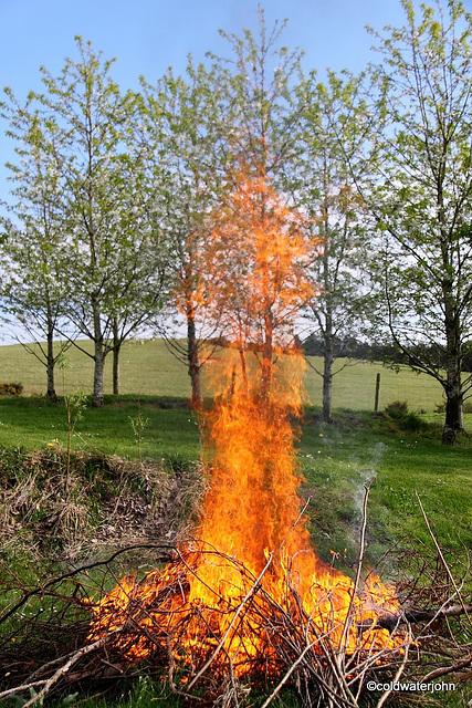 Spring Bonfire Series 1-6