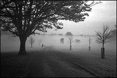 Brockwell Park.