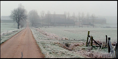 Givre dans les champs, Rodalbe Moselle
