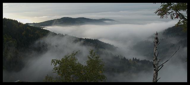 Schwarzwald Panorama, Bühlerthal