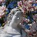 Magnolia statue