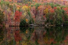Smith Lake Reflections