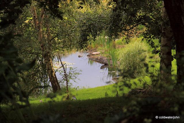 September pond afternoon