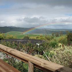 rainbow over Fishy