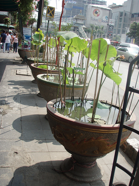 Bangkok - Siam Square area