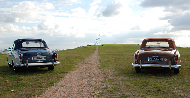 Mercedes Meeting: Two Mercedes-Benz 220 S
