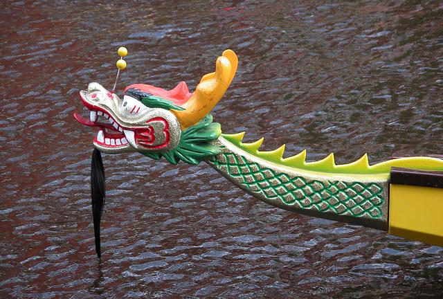 Dragon-boat racing on the Rhine in Leiden