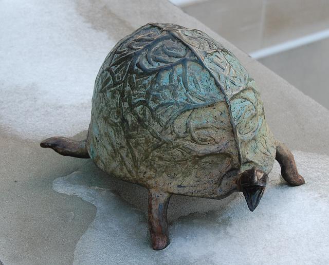 Ice Turtle