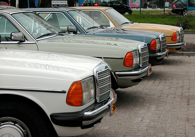 At a Mercedes-Benz meet-'n-drive: A Mercedes is available in many modern colours