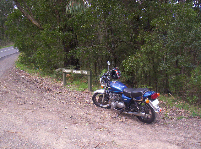 Bluey's first ride in Australia