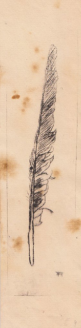 feather dry-point 01