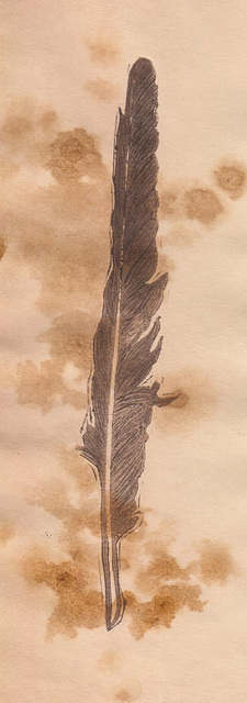 feather dry-point 02