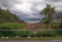 Plockton Bay from the beach road
