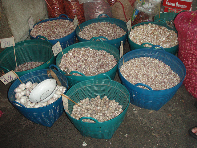 garlic stand