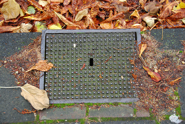 Nameless drain cover