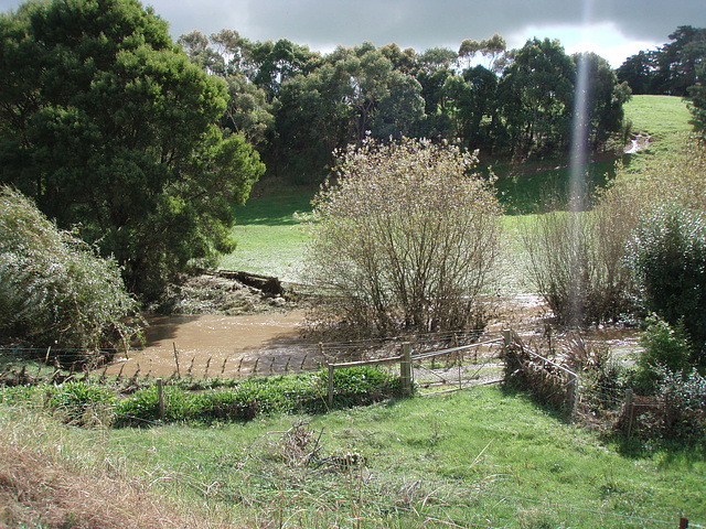 Fish Creek in flood