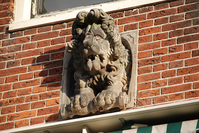 Stone lion with a perm