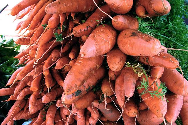 Carrots on the farmer's market in Portland, Oregon