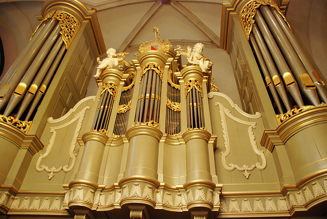 Organ of Utrecht University