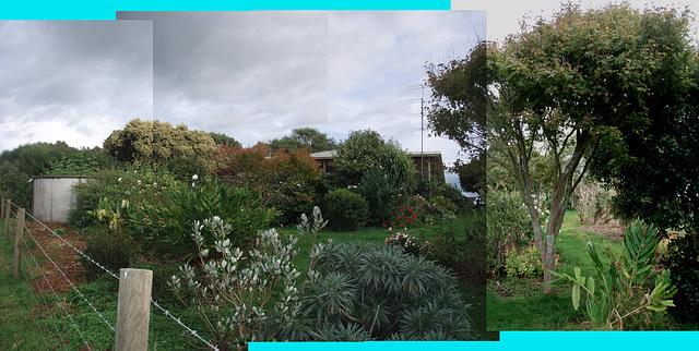 northern garden from easement