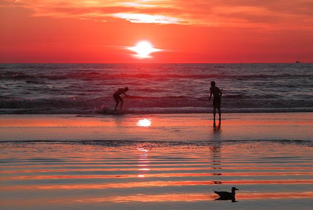 Sunset in Bloemendaal on Sea