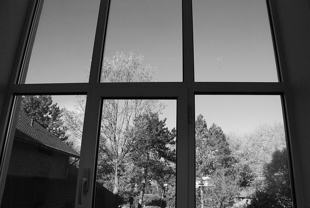 View from my office window in b/w