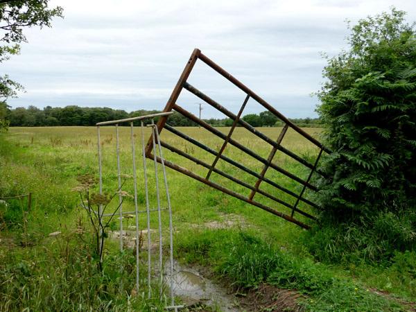 Crazy gates