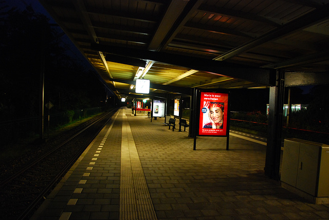 Bloemendaal train station at night