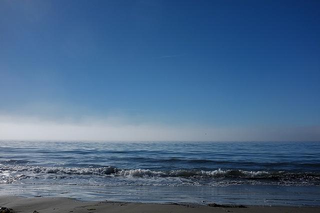 Doran Fog I