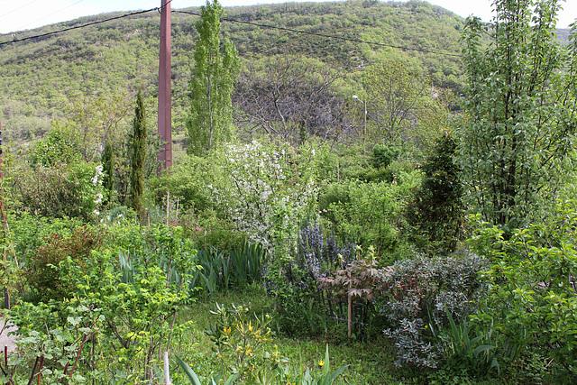 Le jardin de Persiflore