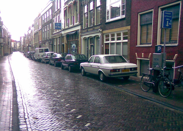 Hogewoerd in Leiden