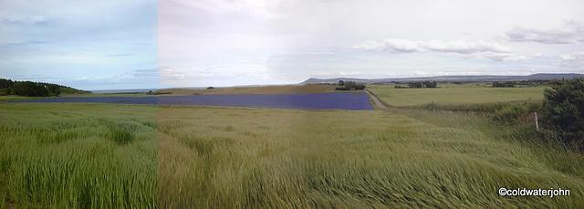 Barley Flax and Bin Hill of Cullen