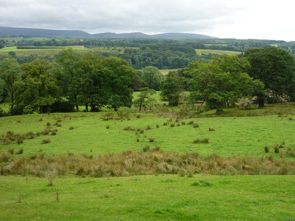 View near Haytongate