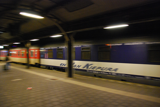 The train to Moscow arriving in Utrecht