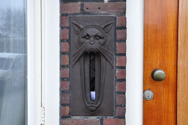 Cat letter box