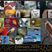 365 Project: February Collage