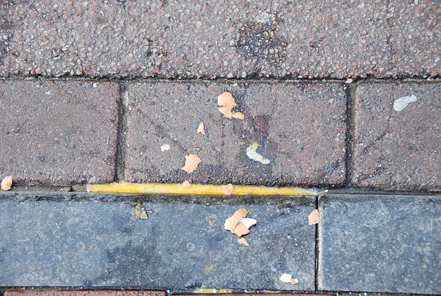 The Egg Riots in Leiden: broken egg