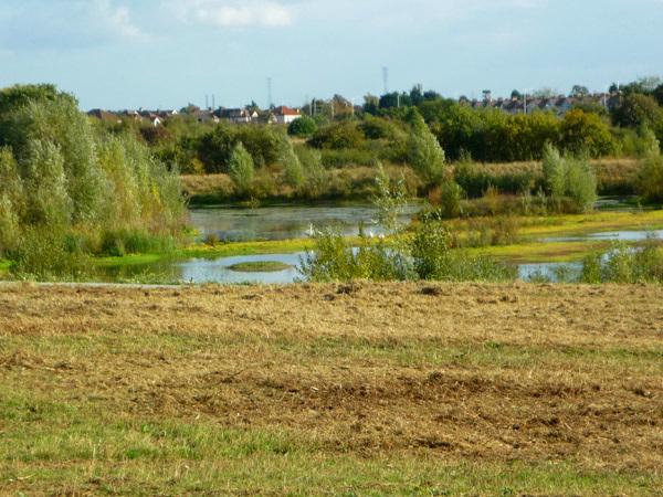 Across the Ingrebourne Valley